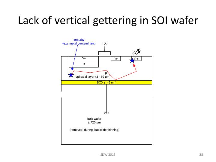Lack of vertical gettering in SOI wafer