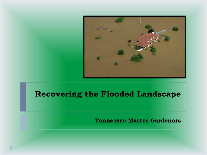 recovering the flooded landscape n.