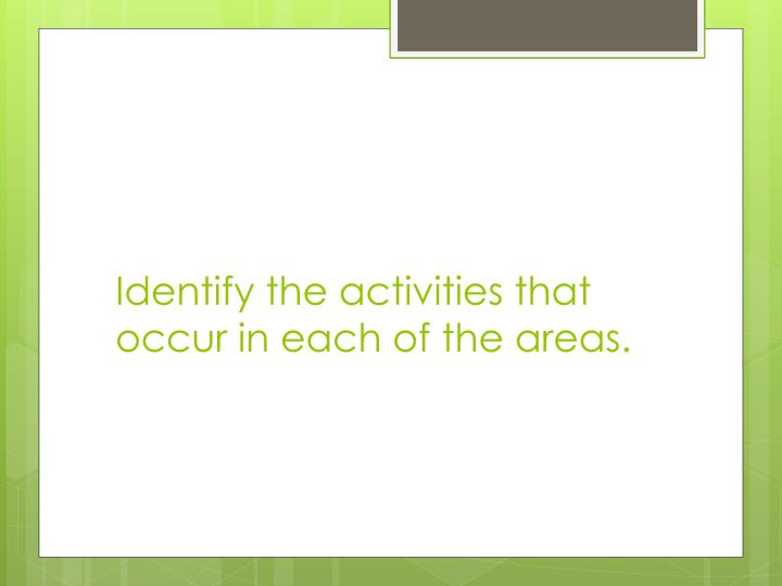 Identify the activities that occur in each of the areas.
