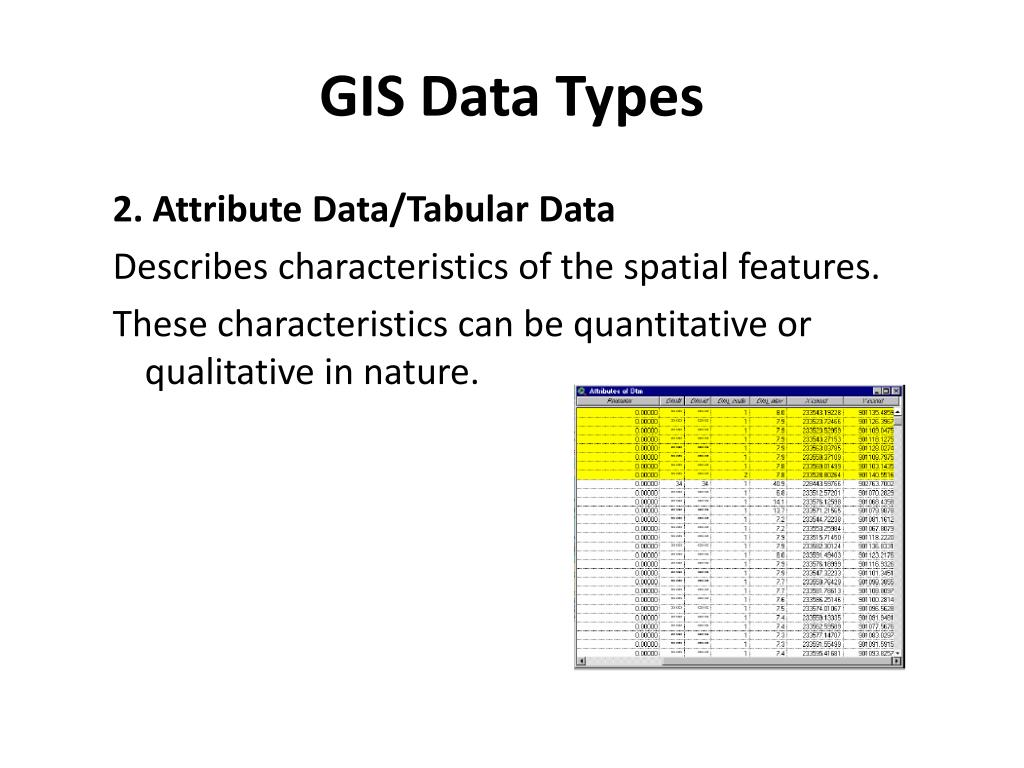 PPT - GIS Data Types PowerPoint Presentation - ID:1600397