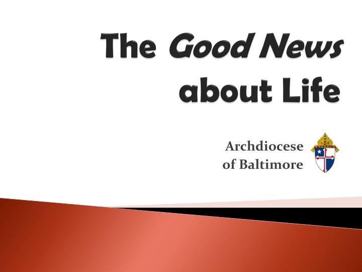 the good news about life n.