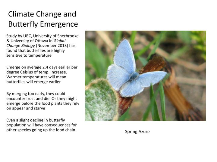 Climate Change and Butterfly Emergence