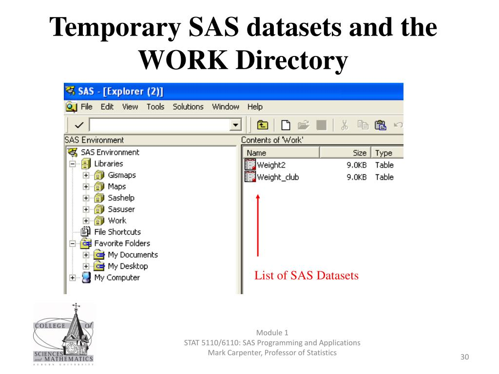 PPT - SAS PROGRAMMING AND APPLICATIONS (STAT 5110/6110) Module 1