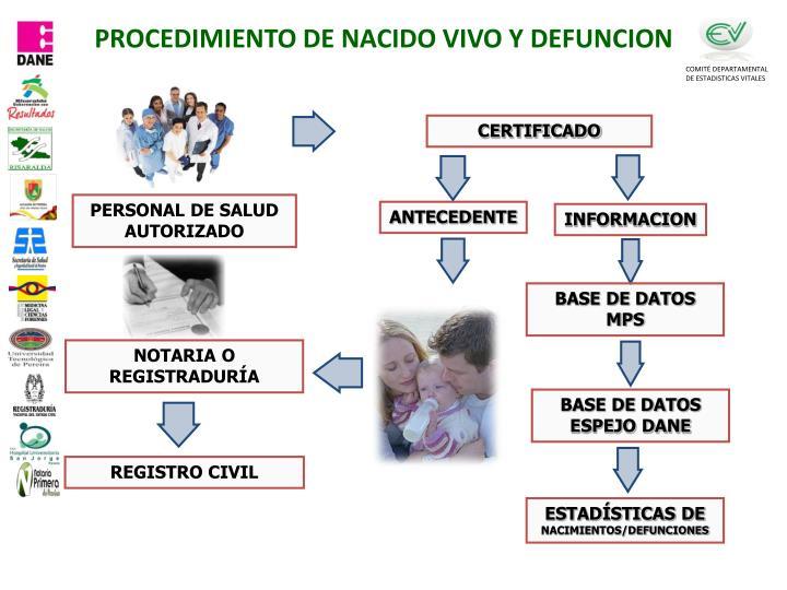PPT - DOCUMENTO BASICO DE INDUCCION PowerPoint Presentation - ID:1601122