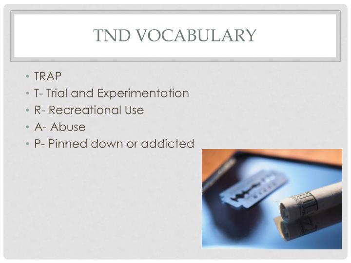 TND Vocabulary