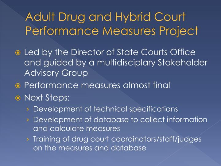 Adult Drug and Hybrid Court Performance Measures Project