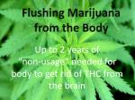 flushing marijuana from the body