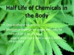 half life of chemicals in the body