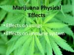 marijuana physical effects