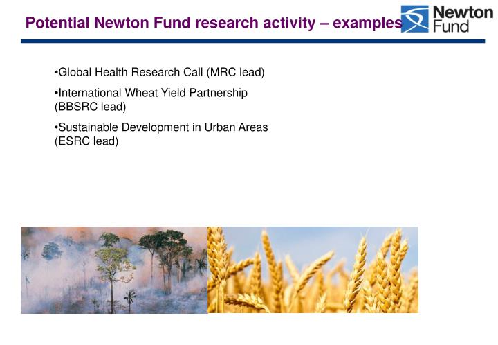 Potential Newton Fund research activity – examples