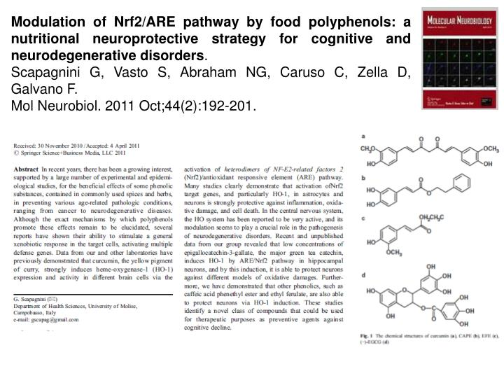 Modulation of Nrf2/ARE pathway by food polyphenols: a nutritional neuroprotective strategy for cognitive and neurodegenerative disorders