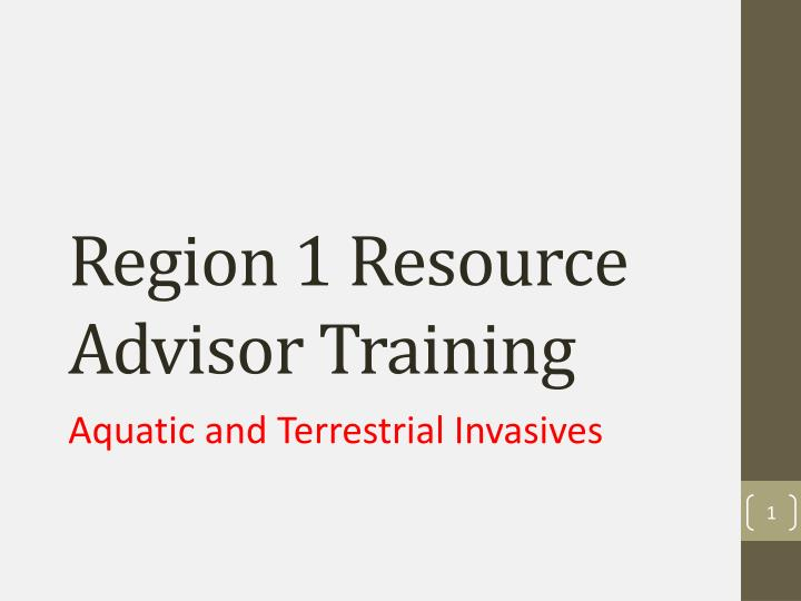 region 1 resource advisor training n.