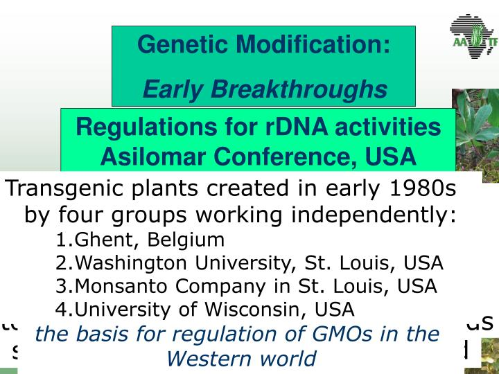 Genetic Modification: