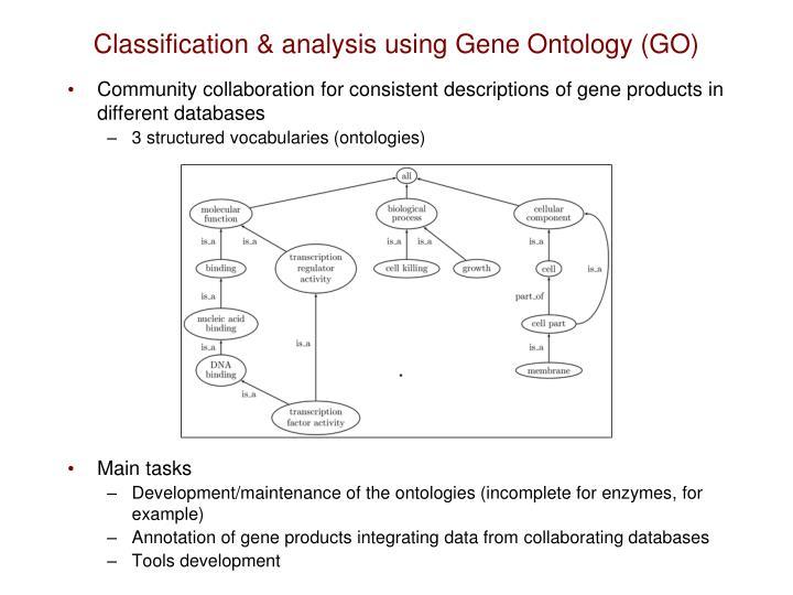 Classification & analysis using Gene Ontology (GO)