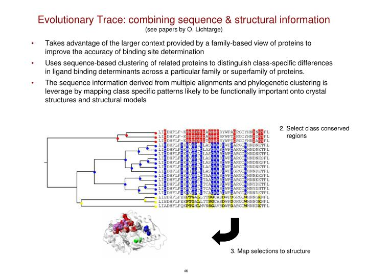 Evolutionary Trace: combining sequence & structural information