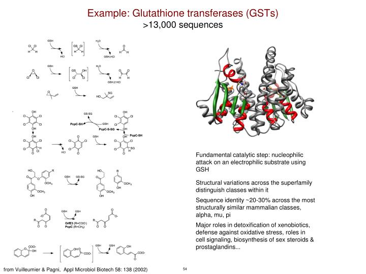 Example: Glutathione transferases (GSTs)