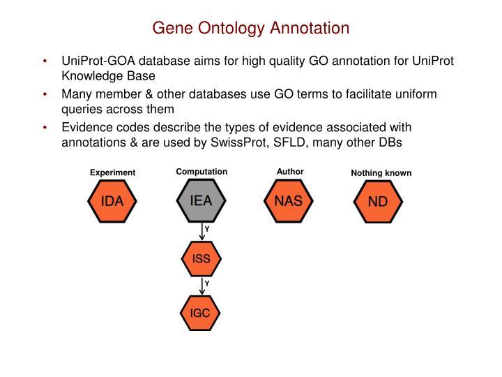 Gene Ontology Annotation