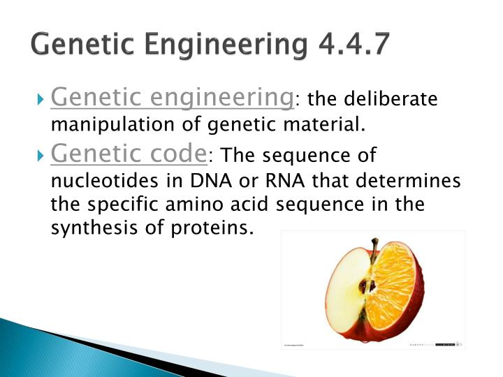 Genetic engineering 4 4 7