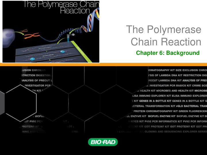 the polymerase chain reaction n.