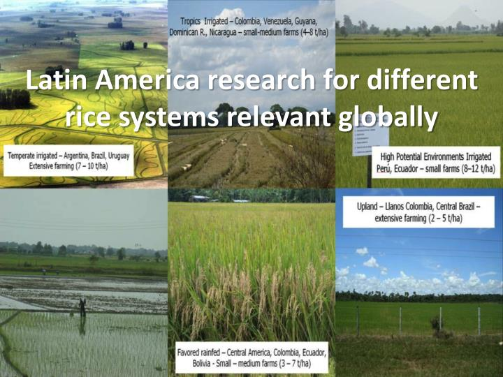 Latin America research for different rice systems relevant globally