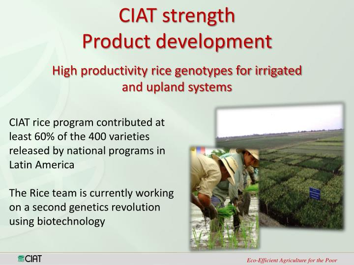 CIAT strength