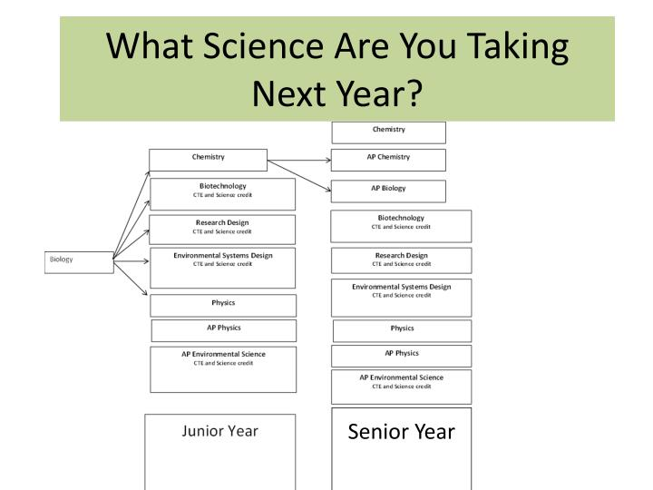 what science are you taking next year n.