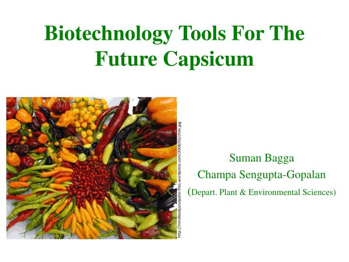 biotechnology tools for the future capsicum n.