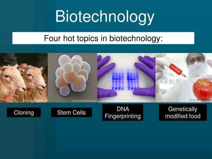 biotechnology cloning Biotechnology is the use of any technique involving living organisms to manufacture or change products, to improve the desired characteristics of a plant or animal, or to alter microorganisms for a purpose.