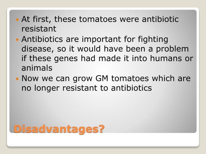 Ppt Genetically Modified Organisms Powerpoint Presentation Id