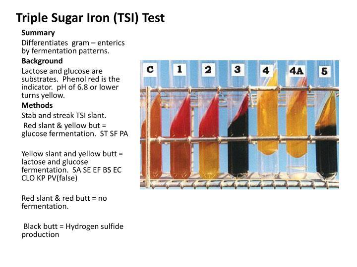 Triple Sugar Iron (TSI) Test