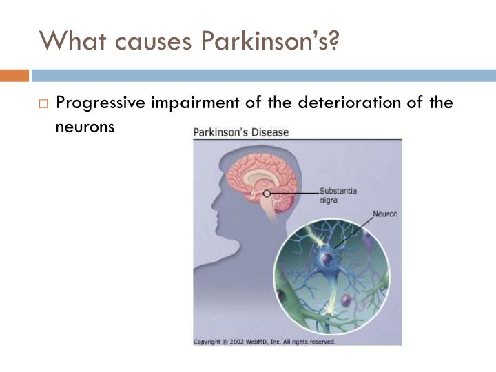 What causes Parkinson's?