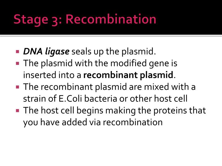 Stage 3: Recombination