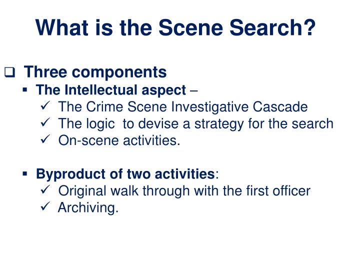 What is the Scene Search?