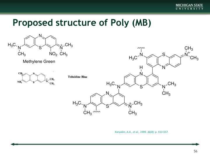 Proposed structure of Poly (MB)