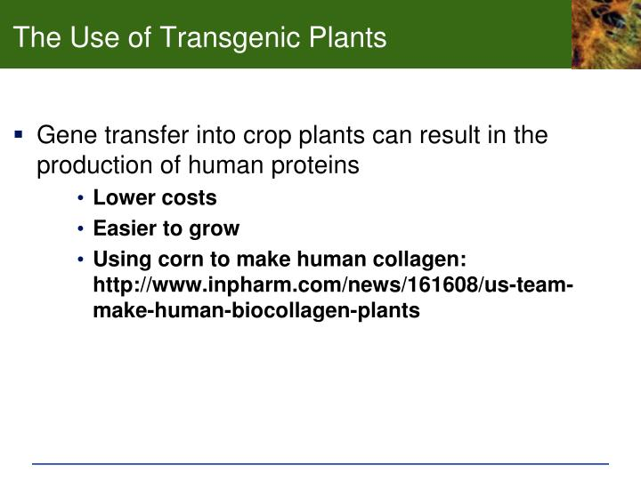 The Use of Transgenic Plants
