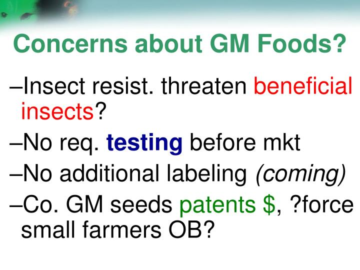 Concerns about GM Foods?