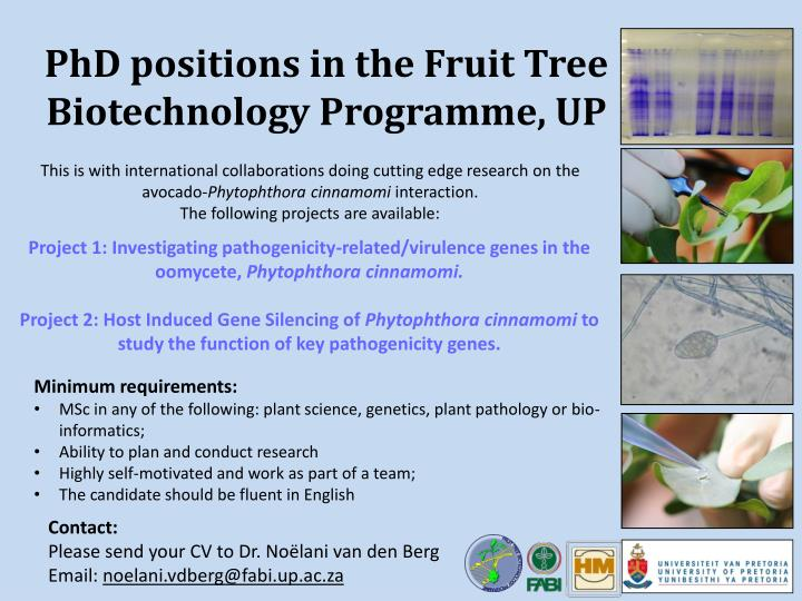 phd positions in the fruit tree biotechnology programme up n.