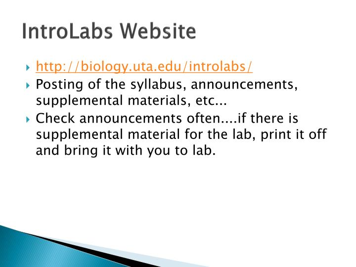 IntroLabs Website