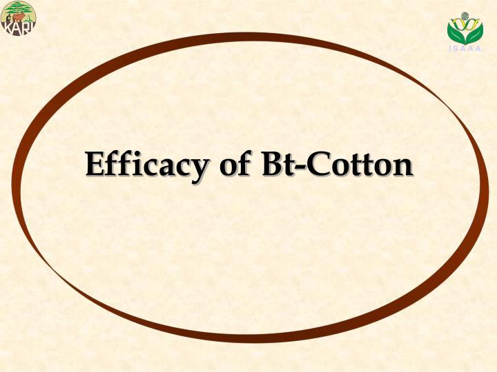 Efficacy of Bt-Cotton