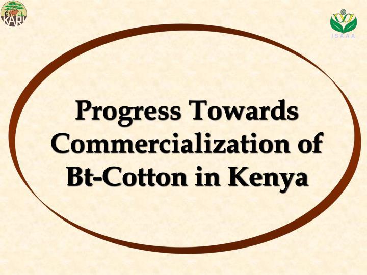 Progress Towards Commercialization of