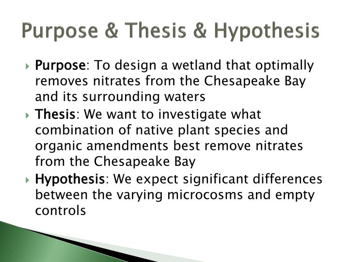 Purpose & Thesis & Hypothesis