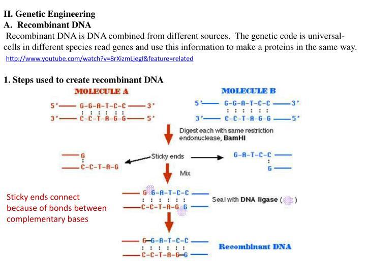 II. Genetic Engineering