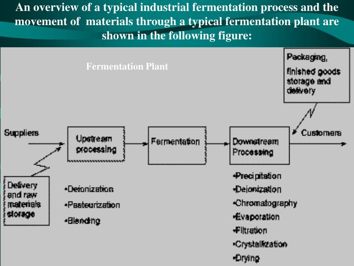 An overview of a typical industrial fermentation process and the movement of