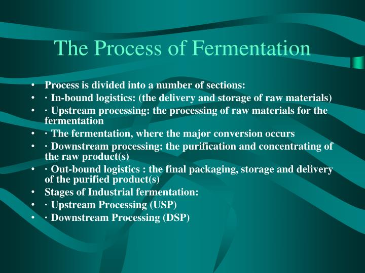 The Process of Fermentation