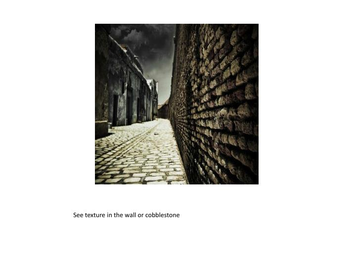 See texture in the wall or cobblestone