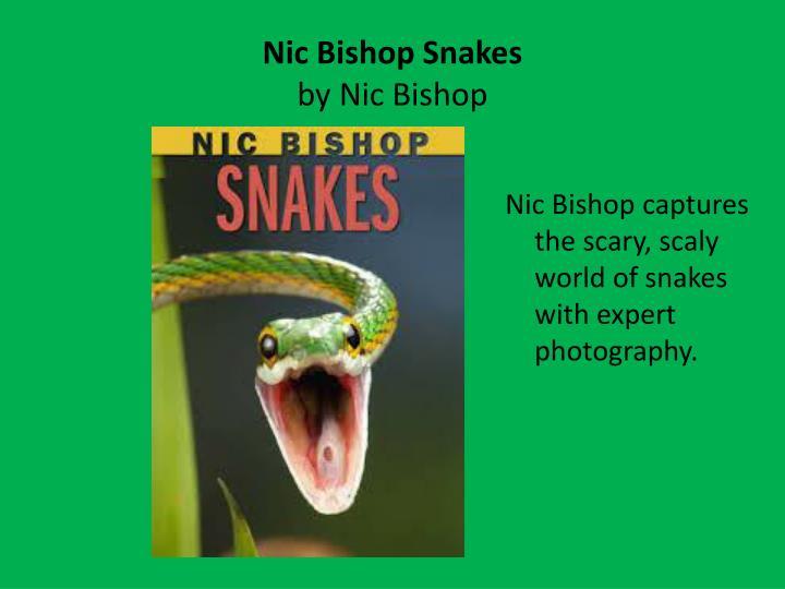 Nic bishop snakes by nic bishop