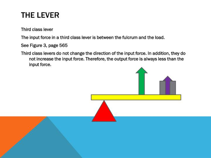 The lever
