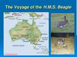 the voyage of the h m s beagle1