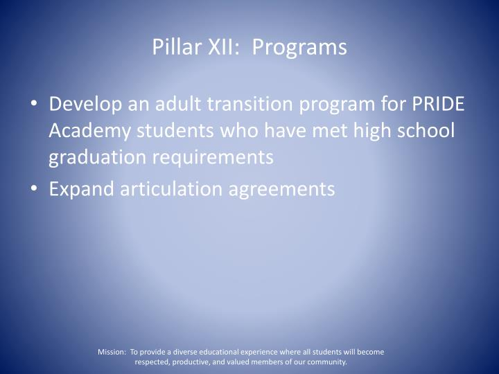 Pillar XII:  Programs
