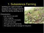 1 subsistence farming